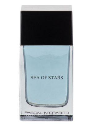 Sea of Stars Pascal Morabito
