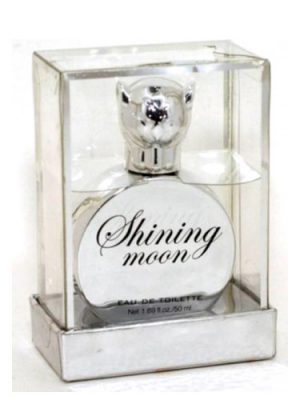 Shining Moon H&M