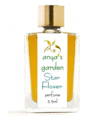 Star Flower Anya's Garden