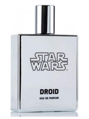 Star Wars Droid Disney