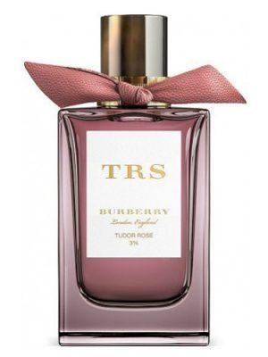 Tudor Rose Burberry