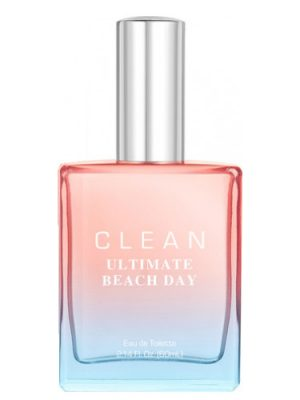 Ultimate Beach Day Clean
