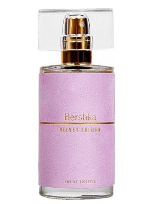 Velvet Edition Bershka