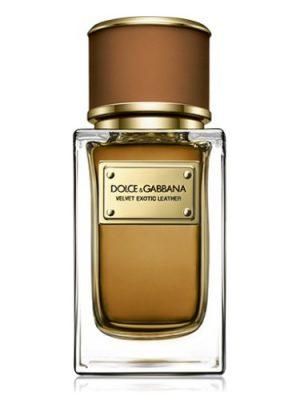 Velvet Exotic Leather Dolce&Gabbana