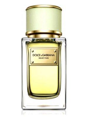 Velvet Pure Dolce&Gabbana