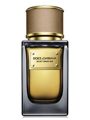 Velvet Tender Oud Dolce&Gabbana