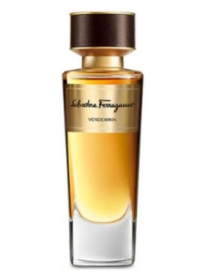 Vendemmia Salvatore Ferragamo