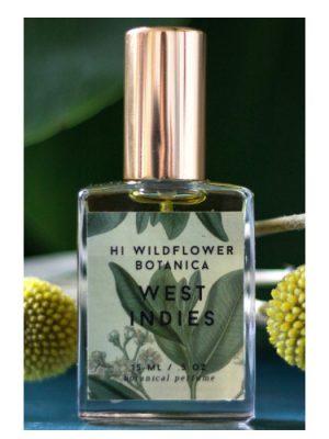 West Indies Hi Wildflower Botanica