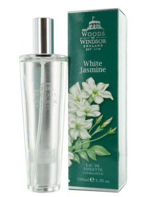 White Jasmine Woods of Windsor