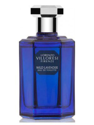 Wild Lavender Lorenzo Villoresi
