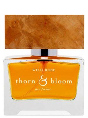 Wild Rose Thorn & Bloom