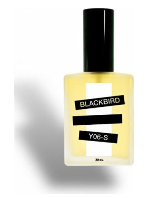 Y06-S Blackbird