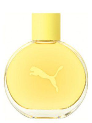 Yellow Puma