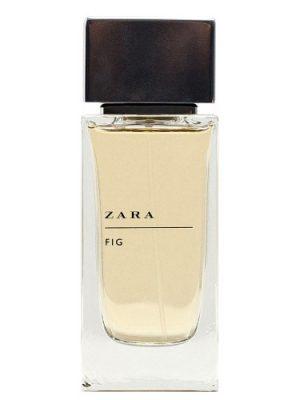 Zara Fig Zara