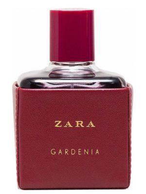 Zara Gardenia 2016 Zara