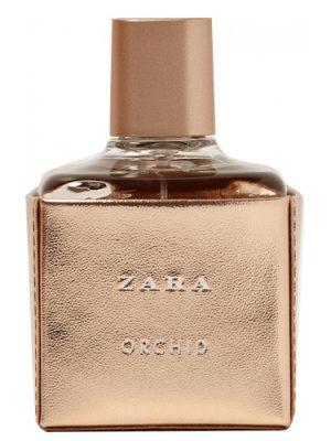 Zara Orchid 2017 Zara